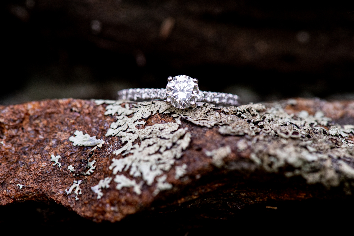 engagement ring at moore state park